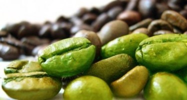 Lifedryn Café Verde