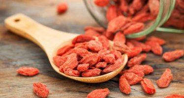 Goji berry cápsulas